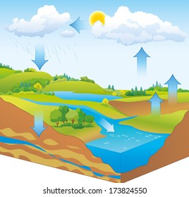 Vector schematic representation of the water cycle in nature