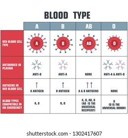 Vector scientific icon table structure of blood. Illustration poster of human blood structure in flat minimalism style.