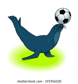 vector sea lion with a ball