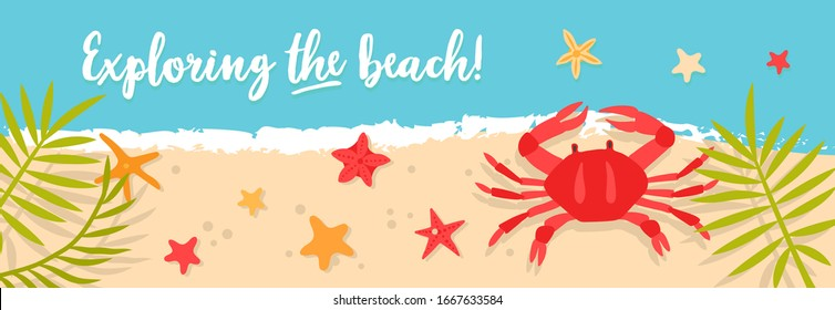 Vector sea or ocean horizontal banners with crab and starfish. Bright hand-drawn illustration with sea animals and mine space. The best summe , summer beach party. Crab, palms, starfish, sand