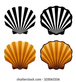 vector sea shells