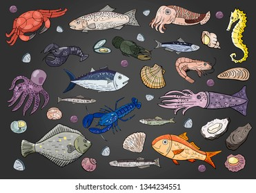 Vector seafood and fish set on black background.