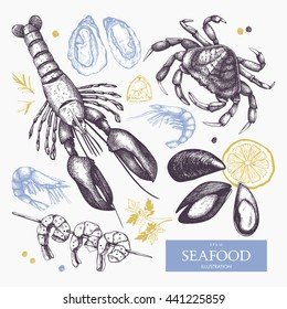 Vector Seafood illustrations set. Hand drawn sea food sketch collection - fresh fish, lobster, crab, oyster, mussel, shrimps and spice. Vintage menu elements.