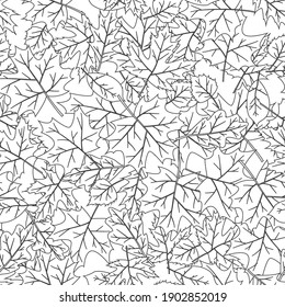 Vector seamless background with leaves in black and white.