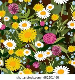 Vector seamless  color pattern of field flowers, camomile, wallpaper