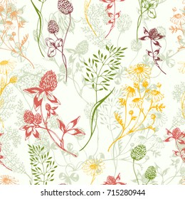 Vector seamless floral background with colored aroma and medical green herbs. Ink drawn botanical illustration for fabric, wrapping, prints and other design. Background with wild meadow herbs
