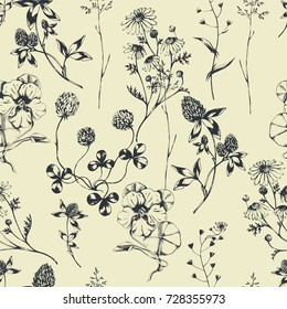 Vector seamless floral pattern with  aroma and medical herbs. Ink drawn botanical illustration for fabric, wrapping, prints and other design. Background with wild meadow herbs.