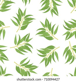 Vector seamless floral pattern with eucaliptus twigs