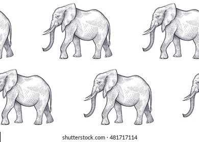 Vector seamless pattern with African animals. Hand drawing of black elephants on a white background.