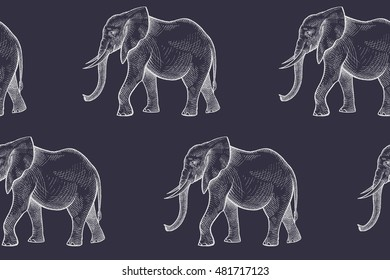 Vector seamless pattern with African animals. Hand drawing white elephants on a black background.