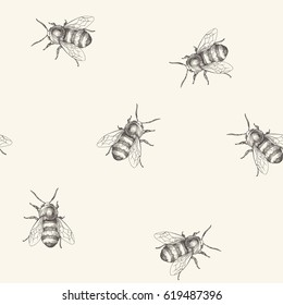 Vector seamless pattern with bee. Vintage hand drawn illustration with insect
