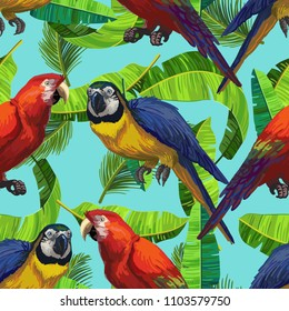 Rain Forest Birds Images, Stock Photos & Vectors | Shutterstock