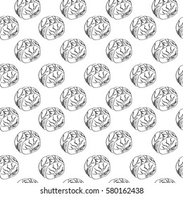 vector seamless pattern with cabbage