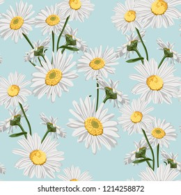 Vector seamless pattern with camomile flower. Summer background.