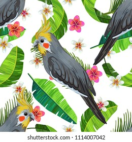 Vector seamless pattern with cockatiel, frangipani flowers and palm leaves on white background. Realistic birds and plants. Colorful summer illustration.