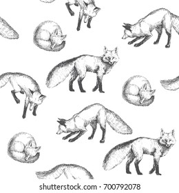 Vector seamless pattern with cute animal characters. Hand drawn illustration with walking, playing and sleeping foxes isolated on background. Black and white texture in sketch style
