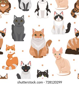 Vector seamless pattern of cute cats. Colored pictures of pets. Cat pet animal pattern background illustration