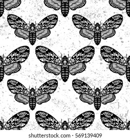 Vector seamless pattern with deaths head hawk moth butterfly.Hand-draw illustration. Design tattoo art.
