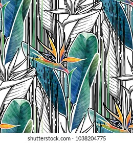 Vector seamless pattern of exotic strelitzia flowers drawn in line graphic and watercolor artistic techniques