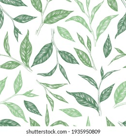 Vector seamless pattern with green hand drawn tea leaves and branches isolated on white background. Engraved style design for print, fabric, invitation, brochure, card, wallpaper, packaging