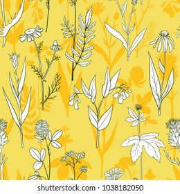 vector seamless pattern with hand drawn medical herbs, line drawing plants, floral background