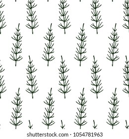 Vector seamless pattern with hand drawn field horsetails. Beautiful floral design elements,  ink drawing.