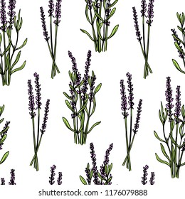 Vector seamless pattern with hand drawn lavender twigs. Beautiful ink drawing, perfect for prints and patterns