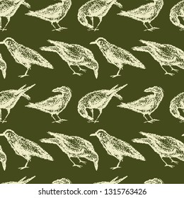 Vector seamless pattern with hand drawn eating city birds. Beautiful chalk drawing, perfect for prints and patterns