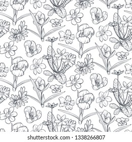 Vector seamless pattern with hand drawn spring flowers and leaves on white background. Romantic endless background in black and white colors. Sketch graphic style