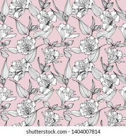 Vector seamless pattern with hand drawn plants. Botanical background with flowers, leaves and branches. Alstroemeria hand drawn black and white flowers on pink background.