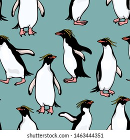 Vector seamless pattern with hand drawn cute Macaroni penguins. Ink drawing, funny illustration, beautiful animal design elements. Perfect for prints and patterns