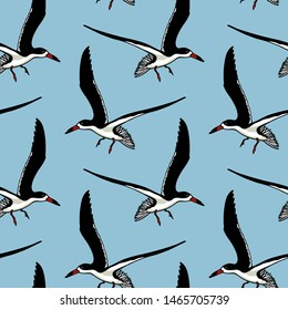 Vector seamless pattern with hand drawn flying black skimmers. Beautiful animal design elements, ink drawing. Perfect for prints and patterns