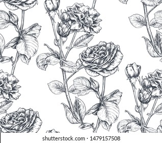 Vector seamless pattern with hand drawn rose flowers and leaves on white. Vector sketch endless background. Summer botanical illustration.