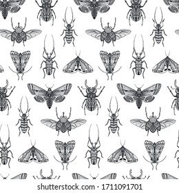 Vector seamless pattern with hand drawn insects, moth, butterfly, beetle, bug. Entomological magical endless background.