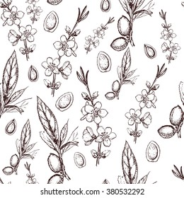 Vector seamless pattern with hand drawn almond fruit, flowers and leaves sketch. Vintage floral background isolated on white. Almond tree seamless background. engraved illustration.