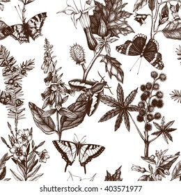 Vector seamless pattern with hand drawn poisonous plants and butterflies. Vintage noxious plants sketch background.