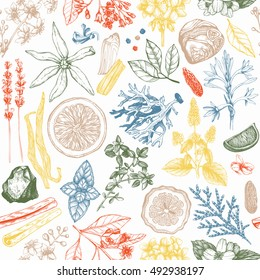 Vector seamless pattern with hand drawn perfumery and cosmetics ingredient sketch. Vintage background with aromatic plants for scented industry.  Herbs and spice illustration