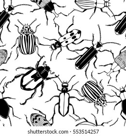 Vector seamless pattern with hand drawn beetles made in retro style. Beautiful ink drawing
