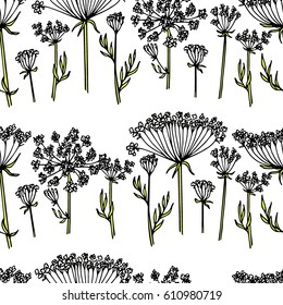 Queen Anne's Lace, 1597 Drawing by Granger