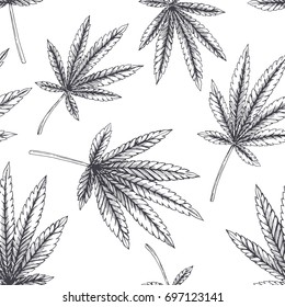 Vector seamless pattern with hemp. Botanical hand drawn illustration with cannabis leaves isolated on white