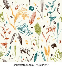 Vector seamless pattern with ink hand drawn agricultural plants sketches. Vintage illustration with legumes, cereal crops, sunflower and flax. Farm fresh and organic products background.