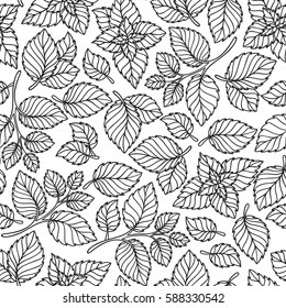 Vector seamless pattern  of mint leaves . black and white graphics Linear. Hand drawing.Good for textile printing and adult coloring books.