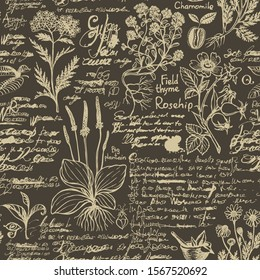 Vector seamless pattern on the theme of medicine and herbal treatment. Retro background with old hand-drawn sketches, unreadable notes, various herbs and blots. Drawing chalk on the blackboard