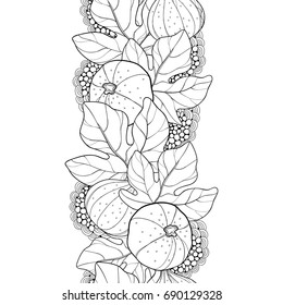 Vector seamless pattern with outline Common Fig or Ficus carica fruit and leaf in black on the white background. Vertical fruit pattern in contour style for exotic summer design and coloring book.