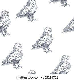 Vector seamless pattern with owls. Hand drawn biological illustration. Engraved wild bird