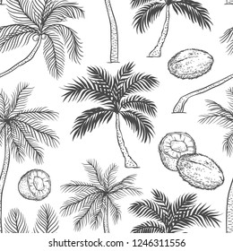 Vector seamless pattern of palm. Different black white kinds of tropical palmtrees and coconut. Contour sketch background monochrome isolated on white background.