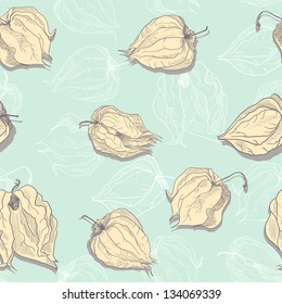 Vector seamless pattern of physalis