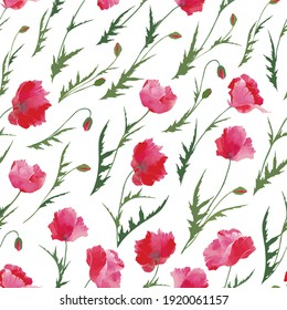 Vector seamless pattern :red and pink poppy flowers with green leaves and small buds on white. Floral design for textile, wallpaper, wrapping paper, notebook cover, card in nice vintage style