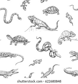 Vector seamless pattern of a reptile. Isolated exotic animals on white background.