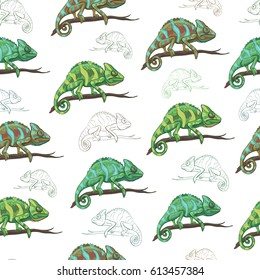 Vector seamless pattern with reptiles. Chameleon on a branch, various varieties of coloring.